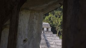Των Μάγια καταστροφές σε Palenque, Chiapas, Μεξικό απόθεμα βίντεο