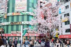 Τόκιο, Ιαπωνία - 22 Μαρτίου 2019: Άποψη των ανθρώπων που περπατούν μέσω της περιοχής ψυχαγωγίας, επιχειρήσεων και αγορών με το ρό στοκ φωτογραφίες με δικαίωμα ελεύθερης χρήσης