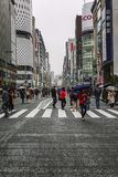 Τόκιο, Ιαπωνία, 04/08/2017: Οι άνθρωποι περπατούν κατά μήκος της για τους πεζούς οδού Ginza στοκ φωτογραφία με δικαίωμα ελεύθερης χρήσης