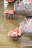 Τόνος για τη δημοπρασία στην αγορά ψαριών Tsukiji Στοκ φωτογραφία με δικαίωμα ελεύθερης χρήσης