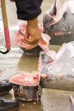 Τόνος για τη δημοπρασία στην αγορά ψαριών Tsukiji Στοκ Εικόνες