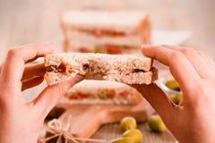 Τόνος, ελιές και σάντουιτς ντοματών Στοκ Φωτογραφίες