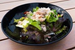 Τόνος και φυτική σαλάτα Στοκ Εικόνα