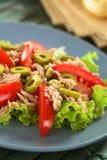 Τόνος, ντομάτα και πράσινη σαλάτα ελιών Στοκ φωτογραφία με δικαίωμα ελεύθερης χρήσης
