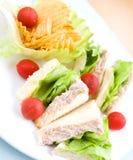 τόνος σάντουιτς σαλάτας πιάτων Στοκ Φωτογραφία