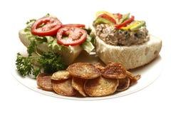 τόνος σάντουιτς σαλάτας Στοκ εικόνες με δικαίωμα ελεύθερης χρήσης