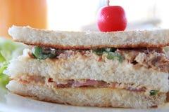 τόνος σάντουιτς σαλάτας Στοκ Εικόνες