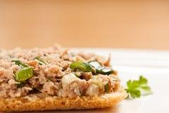 τόνος σάντουιτς σαλάτας Στοκ φωτογραφία με δικαίωμα ελεύθερης χρήσης