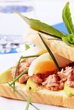 τόνος σάντουιτς Στοκ εικόνες με δικαίωμα ελεύθερης χρήσης