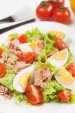 τόνος σαλάτας αυγών Στοκ Εικόνες