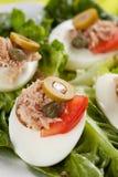 τόνος σαλάτας ελιών αυγών  Στοκ Εικόνες