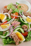 τόνος σαλάτας 2 αυγών Στοκ εικόνες με δικαίωμα ελεύθερης χρήσης