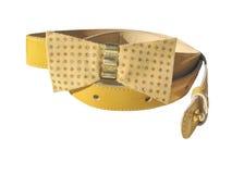 τόξο ζωνών κίτρινο Στοκ Εικόνα