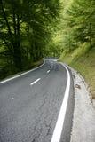 τύλιγμα δασικών δρόμων καμπ Στοκ φωτογραφία με δικαίωμα ελεύθερης χρήσης