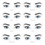 Τύποι ματιών makeup Σεμινάριο μορφής Eyeliner Διάνυσμα που τίθεται με το capti Στοκ Εικόνες