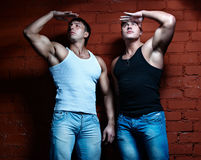 τύποι μυϊκά δύο Στοκ φωτογραφία με δικαίωμα ελεύθερης χρήσης