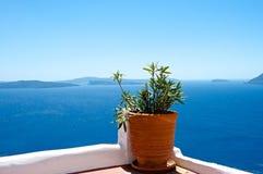 Τύποι Santorini Στοκ φωτογραφία με δικαίωμα ελεύθερης χρήσης