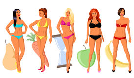 5 τύποι women& x27 αριθμός του s διανυσματική απεικόνιση
