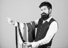 Τύπος με τη γενειάδα που επιλέγει τη γραβάτα Τέλεια γραβάτα Επιλέξτε το δεσμό που έχει τα χρώματα του κοστουμιού και του πουκάμισ στοκ εικόνες με δικαίωμα ελεύθερης χρήσης