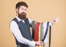 Τύπος με τη γενειάδα που επιλέγει τη γραβάτα Τέλεια γραβάτα Επιλέξτε το δεσμό που έχει τα χρώματα του κοστουμιού και του πουκάμισ στοκ εικόνες