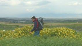 Τύπος με το σακίδιο που περπατά στον όμορφο τομέα, εξάρτηση τουριστών, ενεργός τρόπος ζωής απόθεμα βίντεο