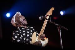 Τύπος Ολλανδία διεθνές Bluesfestival φιλαράκων στοκ εικόνες