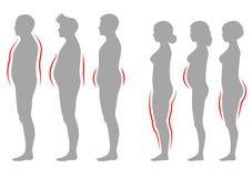 Τύπος σωμάτων γυναικών και ανδρών παχυσαρκίας, διανυσματική υπέρβαρη σκιαγραφία αριθμού ελεύθερη απεικόνιση δικαιώματος