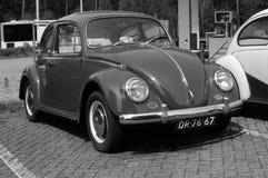 Τύπος του Volkswagen - 1, κάνθαρος Στοκ Εικόνα