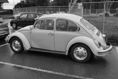 Τύπος του Volkswagen - 1, κάνθαρος Στοκ Φωτογραφίες