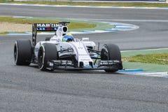 Τύπος 1: Felipe Massa Στοκ φωτογραφία με δικαίωμα ελεύθερης χρήσης