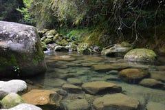 Τώρα αυτός ο ποταμός κινείται γρήγορα! Στοκ εικόνες με δικαίωμα ελεύθερης χρήσης