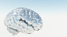 δυαδικός εγκέφαλος ελεύθερη απεικόνιση δικαιώματος