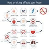 Υγεία και υγειονομική περίθαλψη infographic ελεύθερη απεικόνιση δικαιώματος