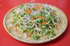 Υγεία τροφίμων σαλάτας στοκ εικόνες