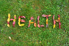Υγεία, όνομα των φύλλων στοκ φωτογραφία με δικαίωμα ελεύθερης χρήσης