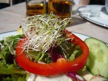 Υγιές αγγούρι πιπεριών λαχανικών τροφίμων γεύματος σαλάτας Στοκ Φωτογραφίες