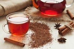 Υγιές αφρικανικό τσάι rooibos στο φλυτζάνι γυαλιού με Στοκ Εικόνα