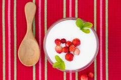 υγιές επιδόρπιο διατροφής με τα φρέσκα μούρα Στοκ Εικόνες