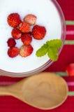 υγιές επιδόρπιο διατροφής με τα φρέσκα μούρα Στοκ φωτογραφία με δικαίωμα ελεύθερης χρήσης