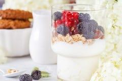 Υγιές ελαφρύ πρόγευμα: παρφαί με τα μούρα και το γιαούρτι, πορτοκάλι Στοκ φωτογραφία με δικαίωμα ελεύθερης χρήσης