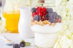 Υγιές ελαφρύ πρόγευμα: παρφαί με τα μούρα και το γιαούρτι, πορτοκάλι Στοκ φωτογραφίες με δικαίωμα ελεύθερης χρήσης