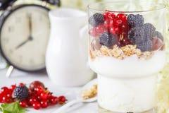 Υγιές ελαφρύ πρόγευμα: παρφαί με το muesli, τα μούρα και το γιαούρτι Στοκ Φωτογραφία
