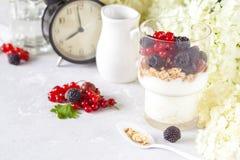 Υγιές ελαφρύ πρόγευμα: παρφαί με το muesli, τα μούρα και το γιαούρτι Στοκ Φωτογραφίες