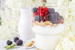 Υγιές ελαφρύ πρόγευμα: παρφαί με το muesli, τα μούρα και το γιαούρτι Στοκ εικόνες με δικαίωμα ελεύθερης χρήσης