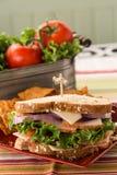 Υγιές ζαμπόν της Τουρκίας σάντουιτς τροφίμων στο ψωμί σίτου Στοκ Φωτογραφίες