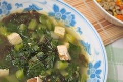 υγιές λαχανικό σούπας Στοκ Εικόνες