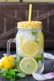 Υγιές νερό με τη μέντα, τα τεμαχισμένα λεμόνια και τα αγγούρια Ποτό διατροφής Sassy νερό Σύνολο βάζων του Mason με τα τεμαχισμένα Στοκ Φωτογραφία