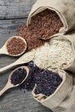 Υγιές οργανικό ρύζι τροφίμων Στοκ Εικόνες