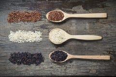Υγιές οργανικό ρύζι τροφίμων Στοκ Φωτογραφίες