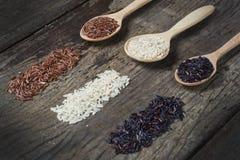 Υγιές οργανικό ρύζι τροφίμων Στοκ Εικόνα